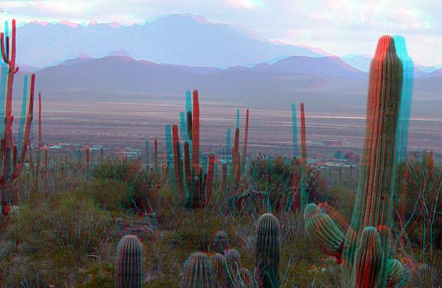 Saguaro National Park em fotografia 3D (Foto: U.S. Department of the Interior/Wiki Commons/Divulgação)